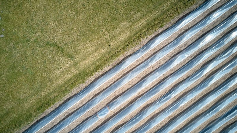 campo de cultivo en Alemania